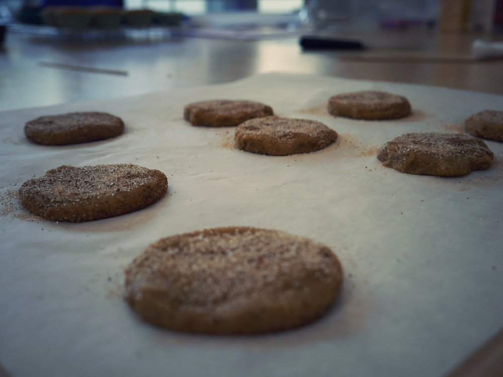 Sugar and cinnamon rolled cookies