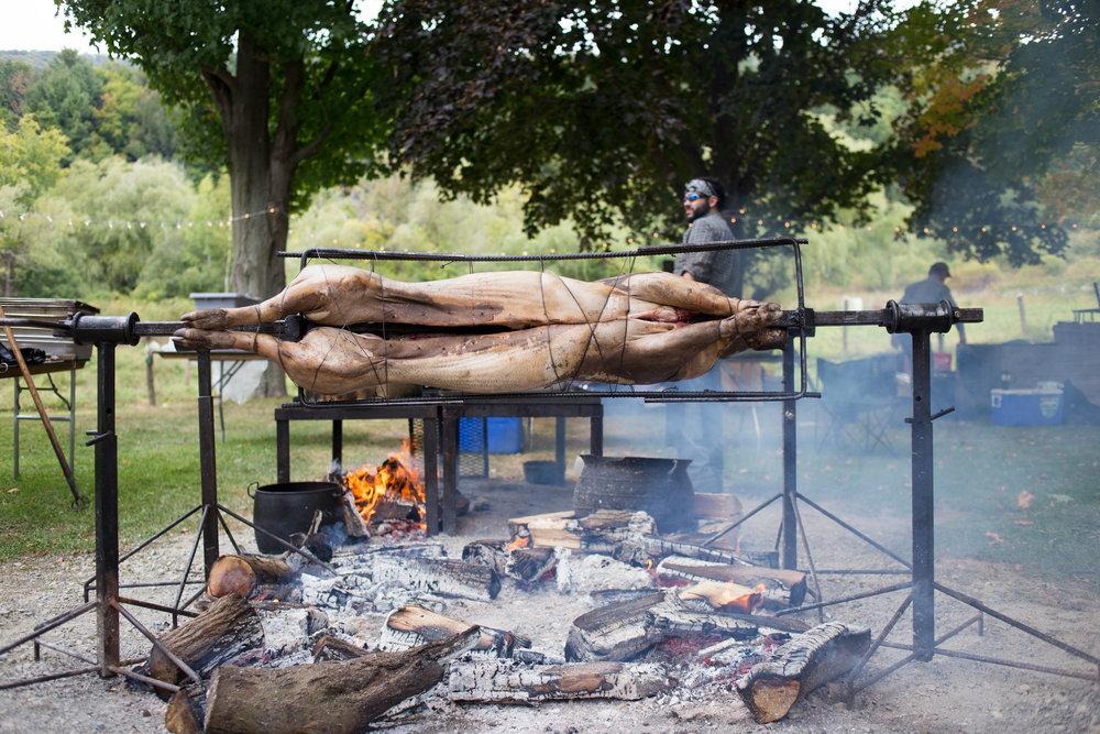 Pig Buffet .jpg