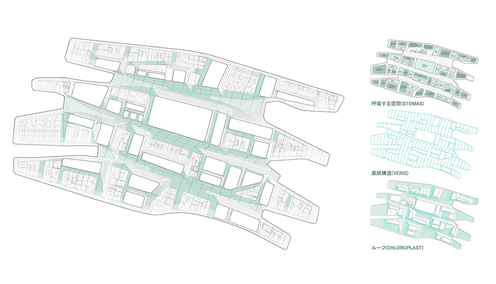 Diagramas02.jpg