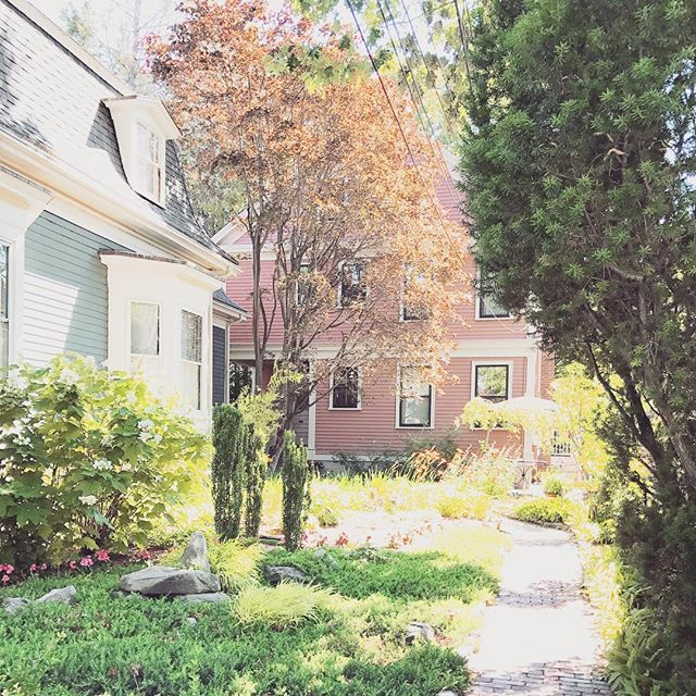One of a few pink houses in the hood that just happen to be tucked away behind another cute ass house. With its own private garden 🙃 #neighb9 #cambridgema #gimme