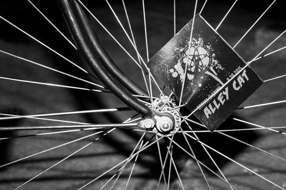 alley-cat-bike-race-023-Edit.jpg
