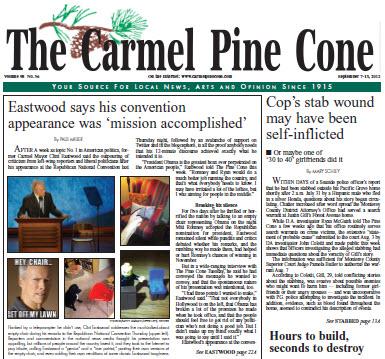 pine cone cover