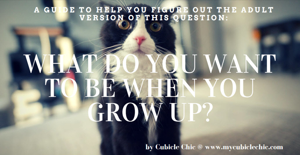 Cubicle Chic Career Advice || What do you want to do when you grow up?