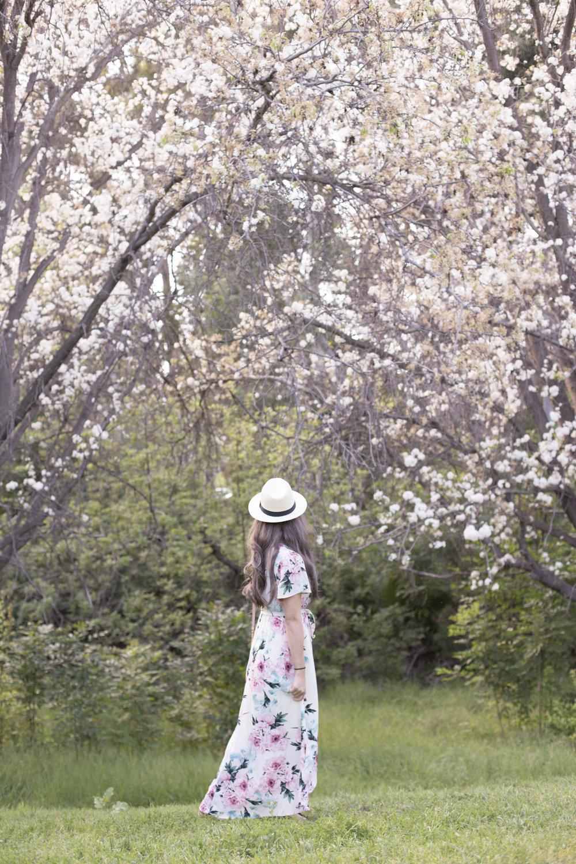 Dress:Garden Stroll Maxi Dress Cream in Small, $30