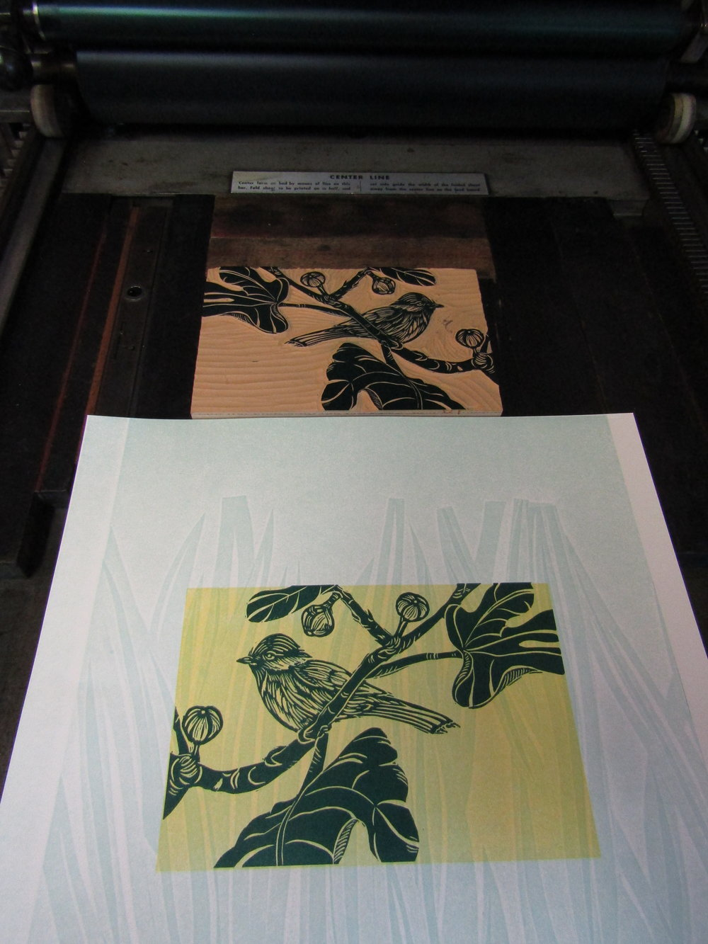 After proofing; I began printing each one on my Vandercook. Each print had three runs; one pressure print of leaves in a pale green, then a yellow mat. The third run was of the relief print, which I printed in a dark green color.