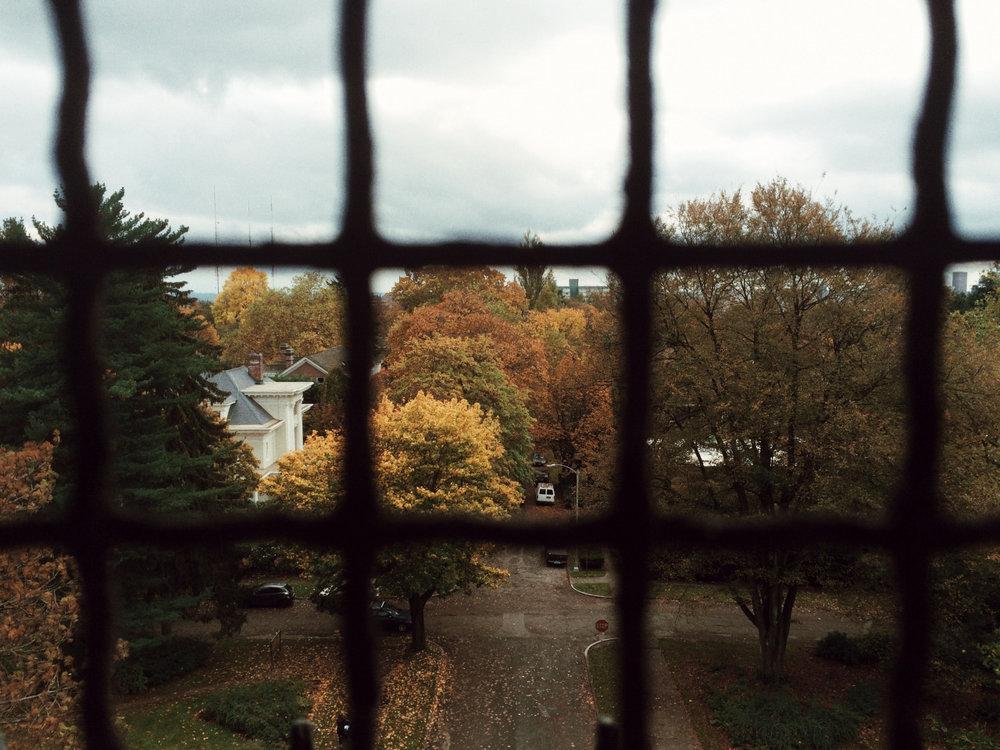 Autumn in Seattle by  Lon.