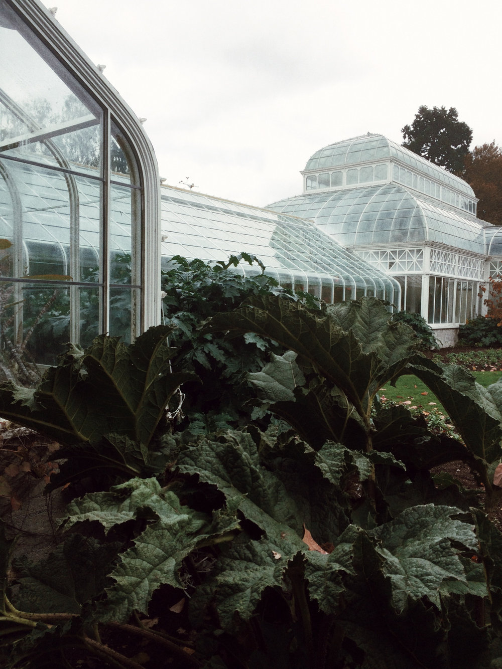Conservatory by  Lon .