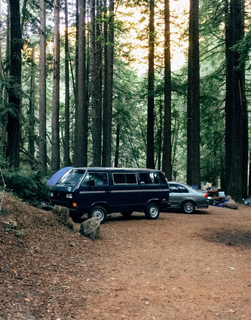 Limekiln State Park by  Lon.