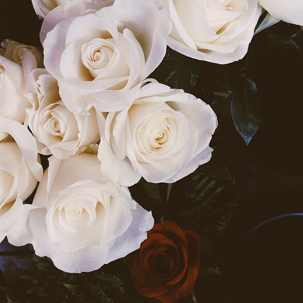 These are for you @mermaaidy :)