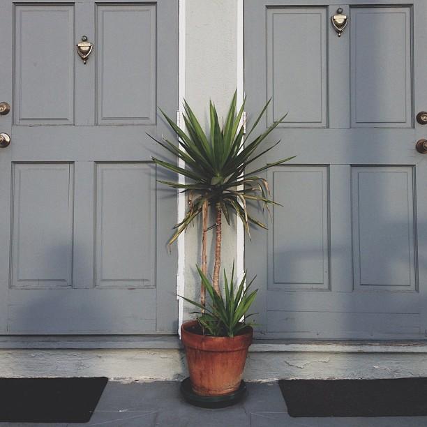 My front door and their front door