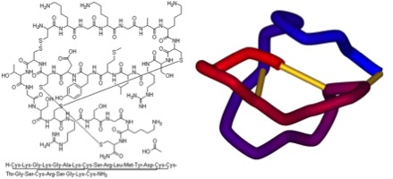 Two representations of the ω-conotoxin ziconotide (Prialt®). In the 3D form on the right the disulfide bonds that give the molecule its shape are marked in yellow. This analgesic is currently used in the clinic primarily for pain control in cancer patients.