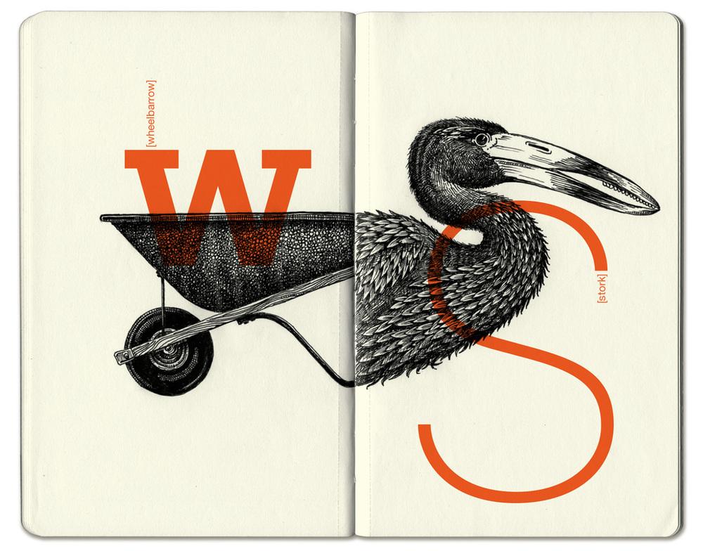 Stork2.jpg