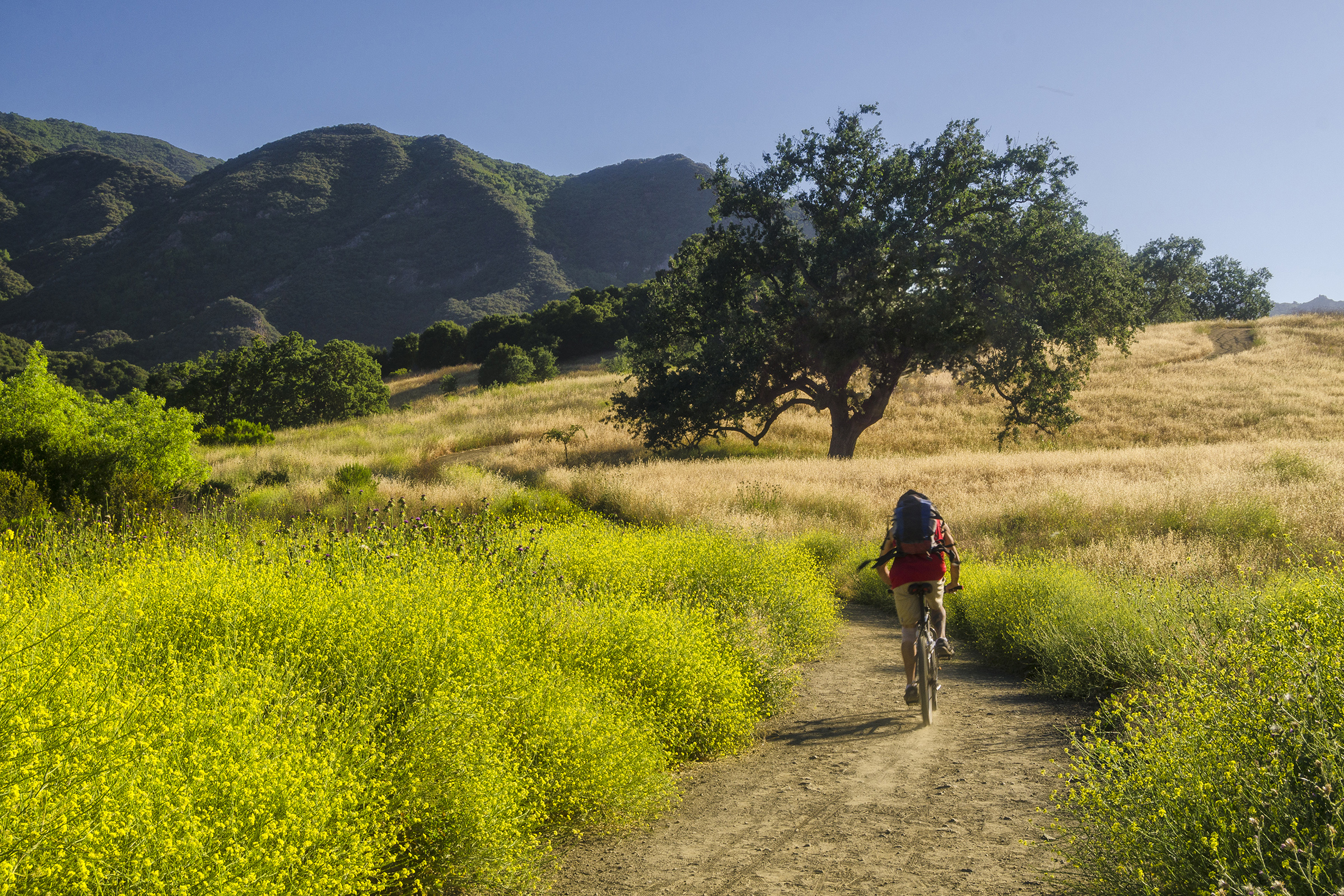 riding in. Malibu Creek State Park, California. Wasim Muklashy Photography