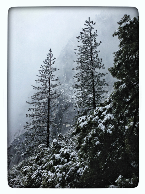 Winter Yosemite by iPhone.
