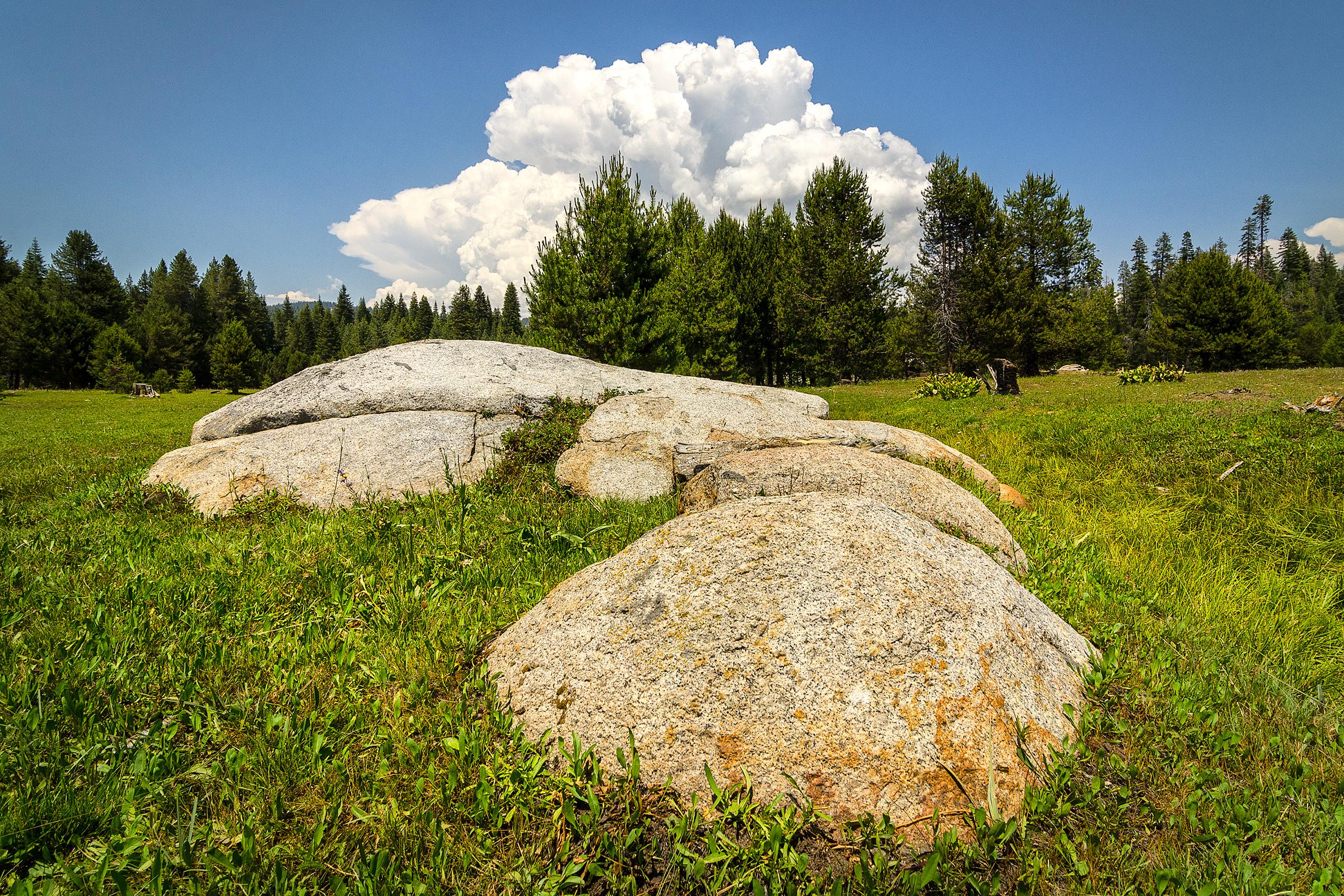 Yosemite National Forest, California. Sierra Nevada Mountains. Wasim Muklashy Photography