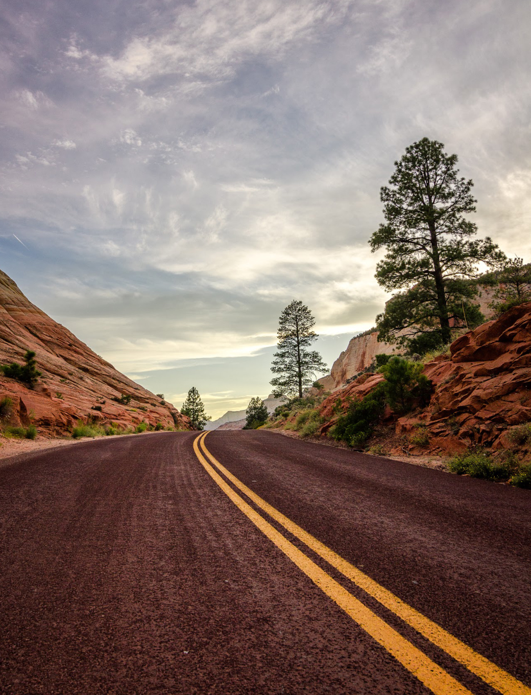 Zion National Park, Utah. Wasim Muklashy Photography