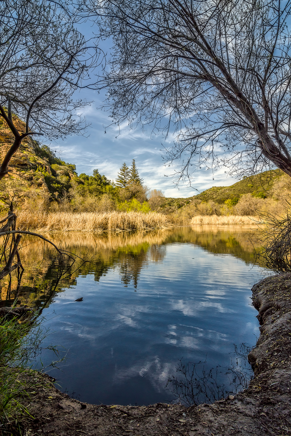 Century Lake, A Portrait. Malibu Creek State Park, California. Wasim Muklashy Photography