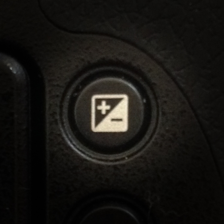 Exposure Compensation Button
