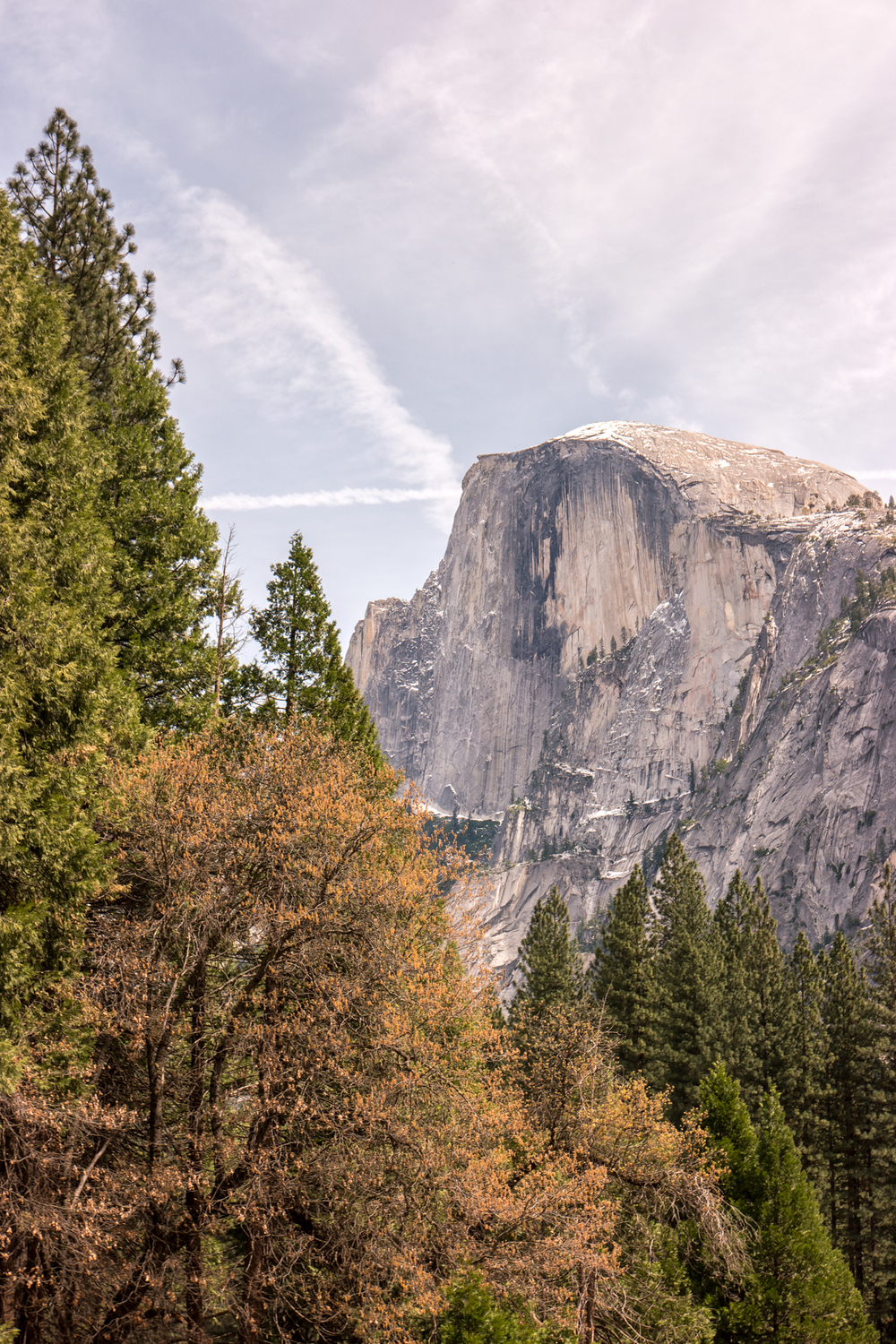 Wasim Muklashy Photography_April 2015_Yosemite_California_Samsung NX500_ SAM_1640_1800px.jpg
