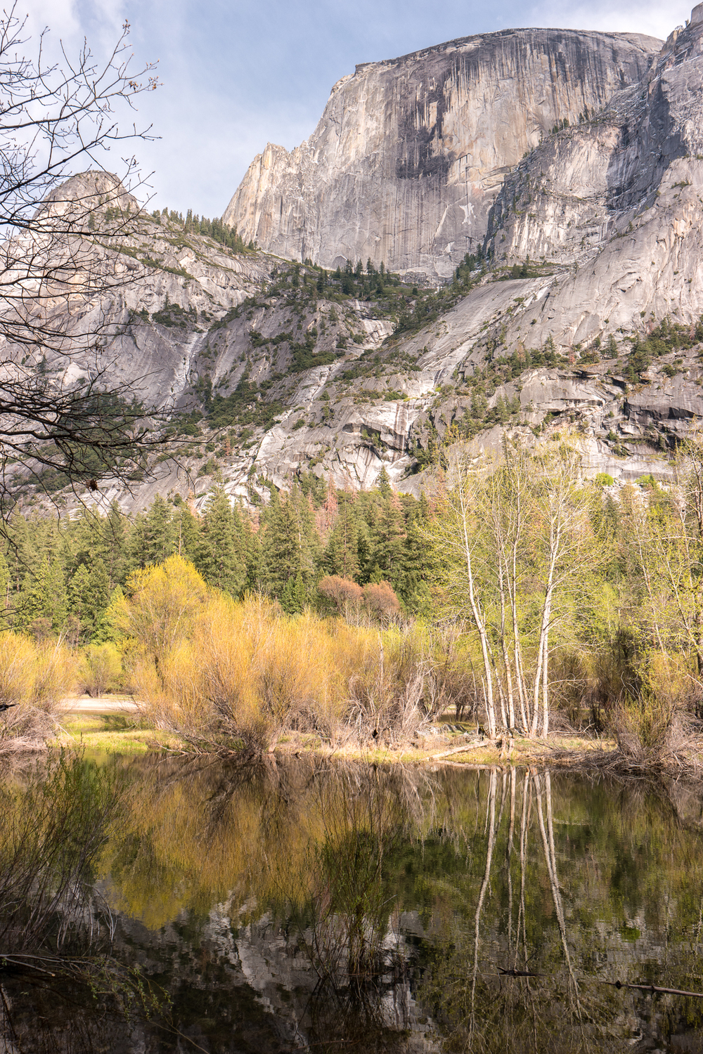 Wasim Muklashy Photography_April 2015_Yosemite_California_Samsung NX500_ SAM_1661_1800px.jpg