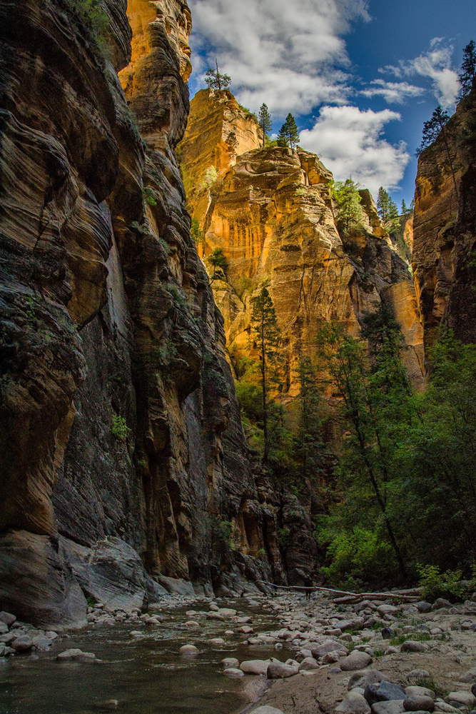 Wasim Muklashy Photography_Zion National Park_Utah_The Narrows_08.jpg