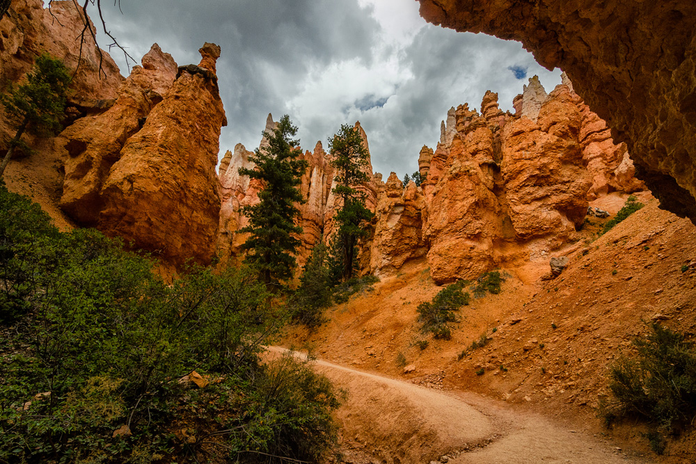 Wasim Muklashy Photography_Bryce Canyon National Park_Utah_14.jpg