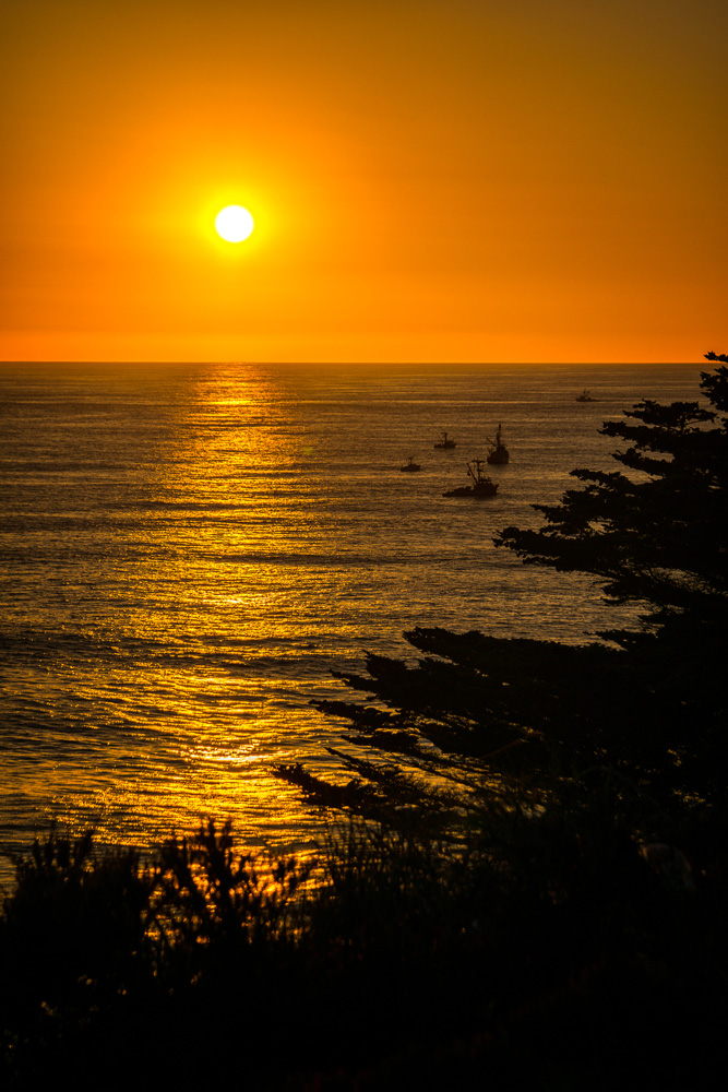 Wasim Muklashy Photography_Big Sur_California_Part 2_08.jpg