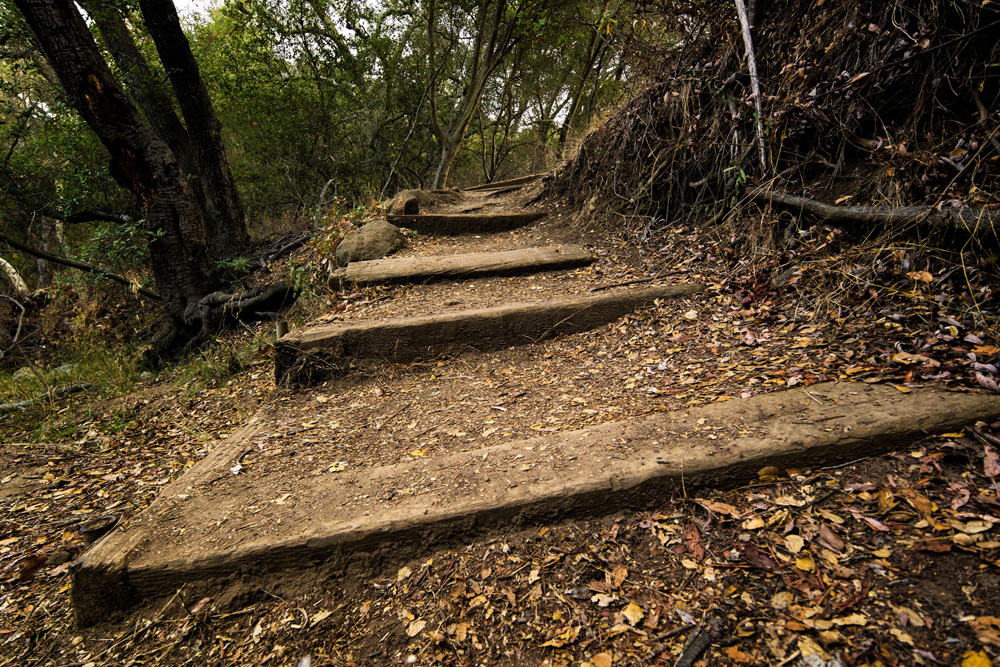 Wasim Muklashy Photography_Hiking_Topanga Canyon_California_06.jpg