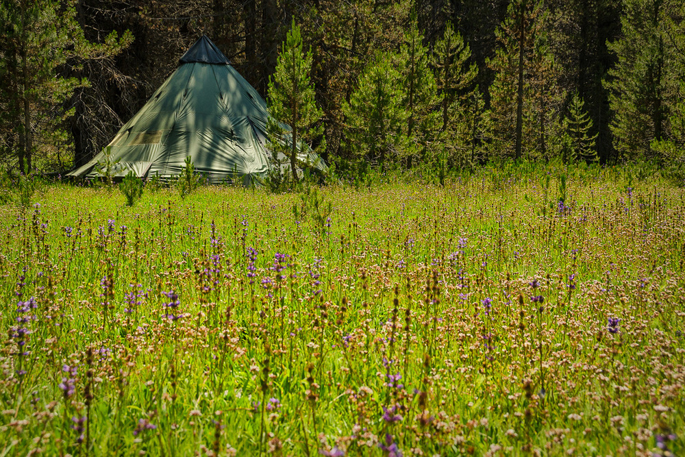 Wasim Muklashy Photography_Yosemite_California_Far Meadow_Real Estate Photography_07.jpg
