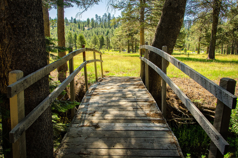 Wasim-Muklashy-Photography_Far-Meadow_Yosemite_California_43.jpg