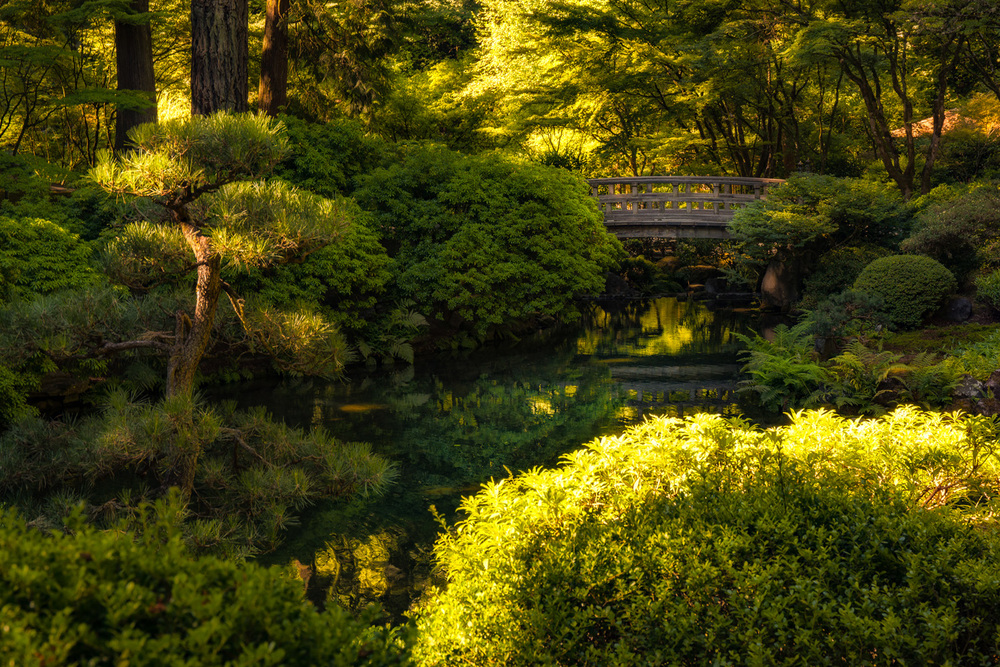 Wasim Muklashy Photography_Samsung NX1_Japanese Garden_Portland_Oregon_ SAM_6446-Edit-4.jpg