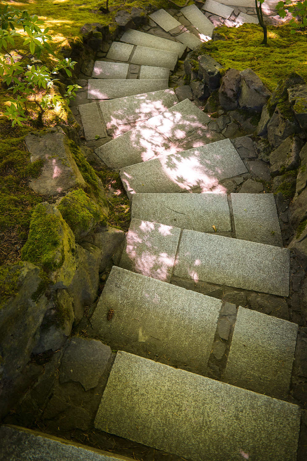 Wasim Muklashy Photography_Samsung NX1_Japanese Garden_Portland_Oregon_ SAM_6467-Edit-2.jpg