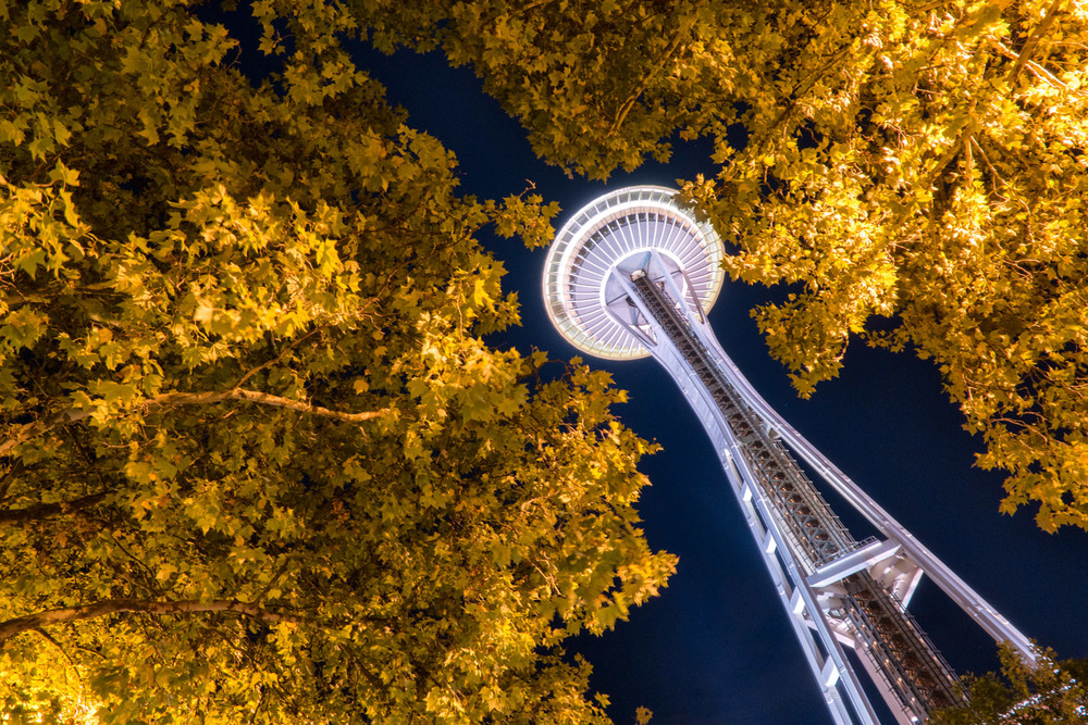 Wasim Muklashy Photography_Samsung NX500_DPReview_PIX2015_Space Needle_Seattle_Washington_10.jpg