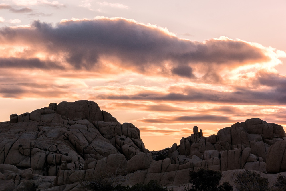 Wasim Muklashy Photography_Samsung NX1_Joshua Tree National Park_California_-SAM_2161-Edit.jpg