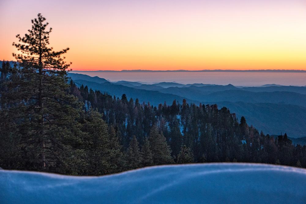 Wasim Muklashy Photography_Sequoia National Park_California_December 2015_-SAM_4675-Edit.jpg