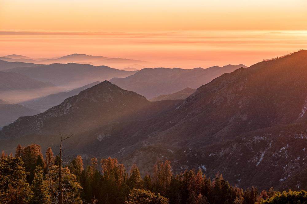 Wasim Muklashy Photography_Sequoia National Park_California_December 2015_-SAM_4167-Edit.jpg