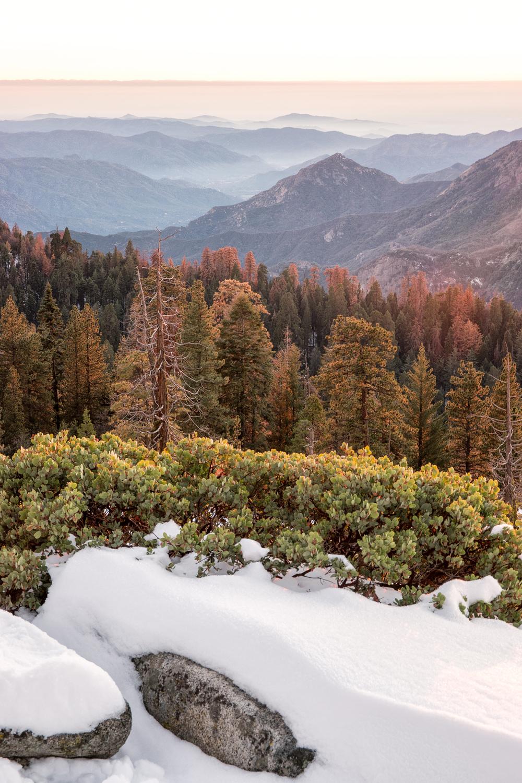 Wasim Muklashy Photography_Sequoia National Park_California_December 2015_-SAM_4190-Edit.jpg