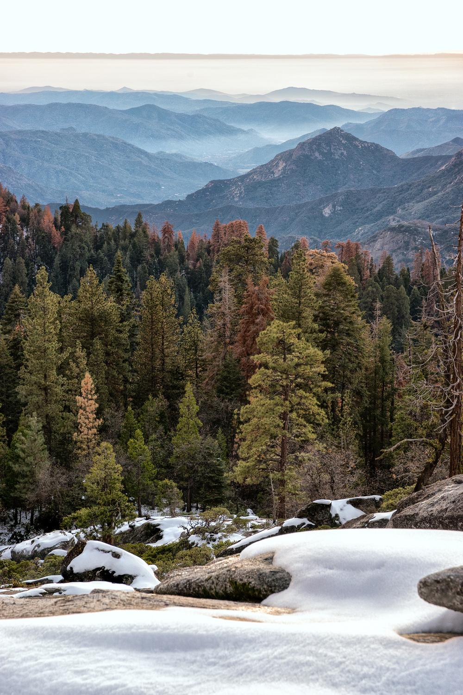 Wasim Muklashy Photography_Sequoia National Park_California_December 2015_-SAM_4214-Edit.jpg
