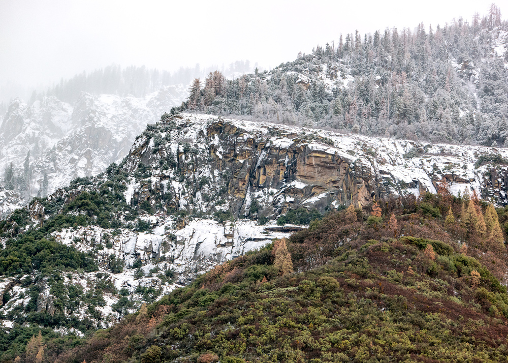 Wasim Muklashy Photography_Sequoia National Park_California_December 2015_-SAM_4278-Edit.jpg