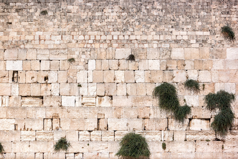 Wasim Muklashy Photography_Wasim of Nazareth_Israel_Palestine_43.jpg