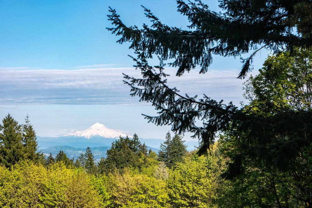 Wasim Muklashy Photography_Wasim of Nazareth Photography_Pacific Northwest_Oregon Washington_Months 1-3 Highlights_072.jpg