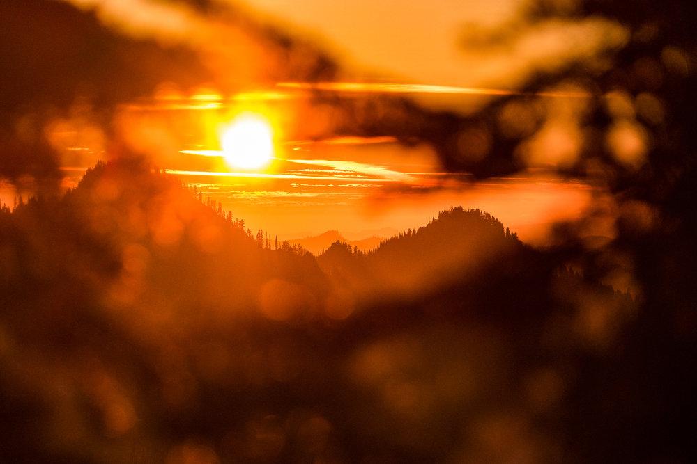 Wasim Muklashy Photography_Olympic National Park_High Divide Loop_034.jpg