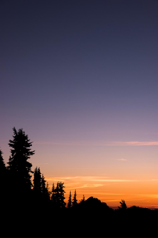 Wasim Muklashy Photography_Olympic National Park_High Divide Loop_036.jpg