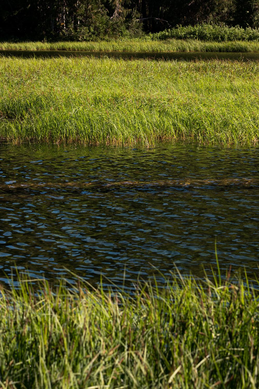 Wasim Muklashy Photography_Olympic National Park_High Divide Loop_105.jpg