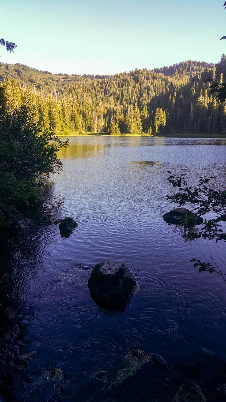 Wasim Muklashy Photography_Olympic National Park_High Divide Loop_143.jpg