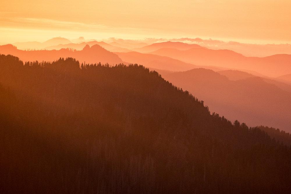 Wasim Muklashy Photography_Olympic National Park_High Divide Loop_032.jpg