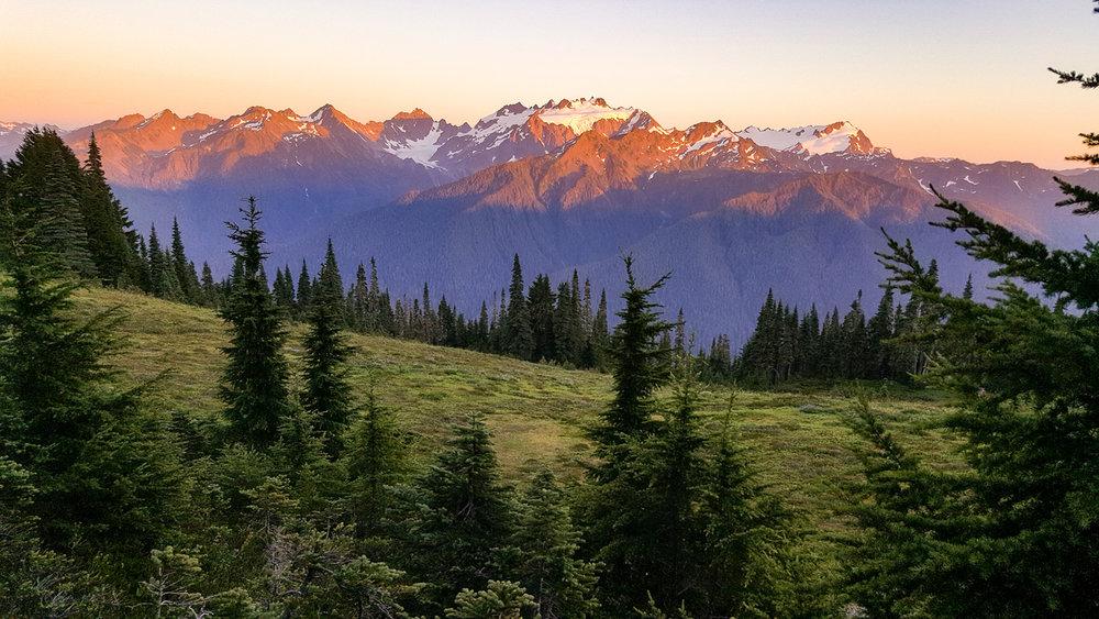 Wasim Muklashy Photography_Olympic National Park_High Divide Loop_120.jpg