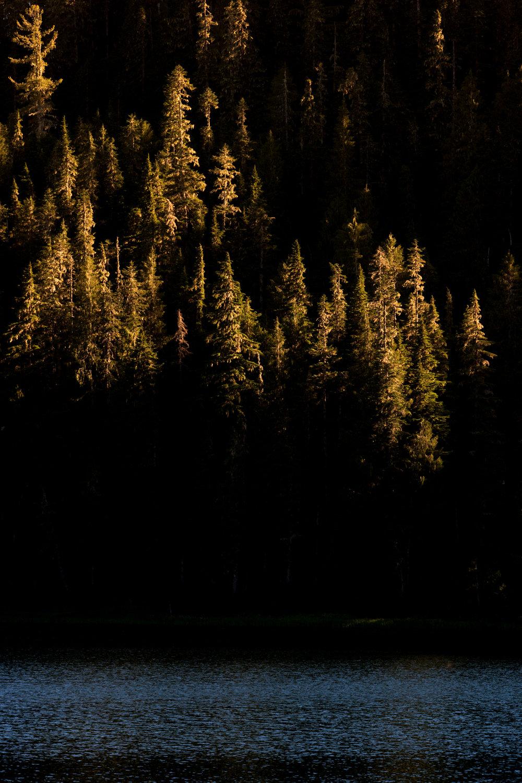 Wasim Muklashy Photography_Olympic National Park_High Divide Loop_109.jpg