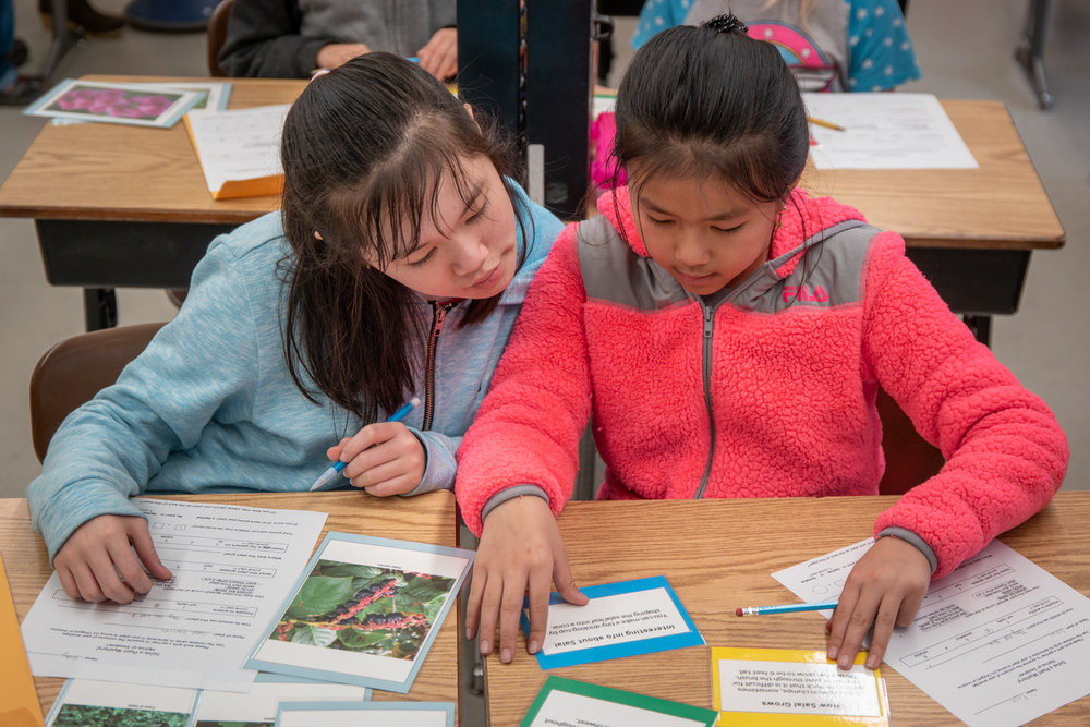 Wasim Muklashy Photography_Ecology in Classrooms and Outdoors_ECO_Curriculum Kits_Portland_Oregon_116.jpg