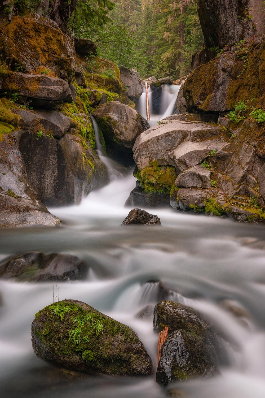 Wasim Muklashy Photography_Wasim of Nazareth_Mount Rainier National Park_Washington_133.jpg